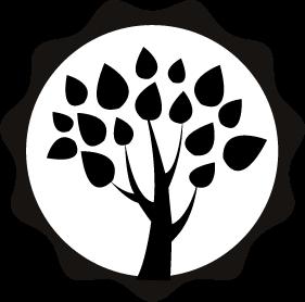 CRISTAL DE QUARTZO - Sabão Natural